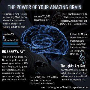 Your Amazing brain's functionality